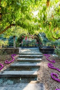 weddings in napa valley wine country