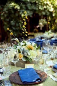 sonoma valley wedding healdsburg