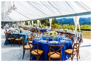 wine country weddings private estates and wineries