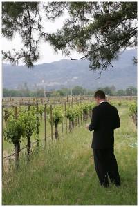best wedding planner napa valley