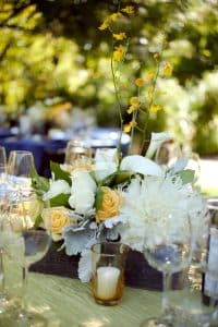 sonoma valley wedding healdsburg