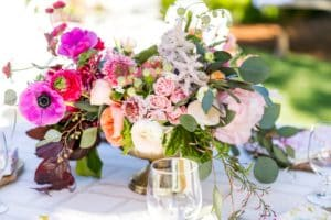 Winery Events in Napa
